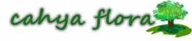Cahya Flora – Spesialis Pohon Pelindung